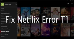 Fix Netflix App Error T1 in Windows PC