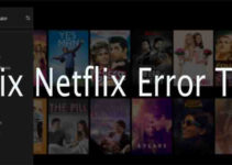 fix neflix T1 error